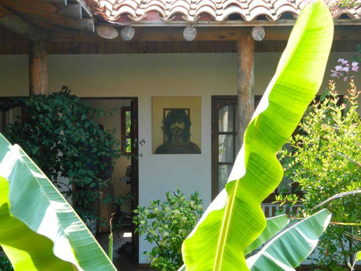 Patio con plátano - La Mirage Parador